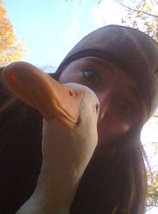 Duck Faces, part 2