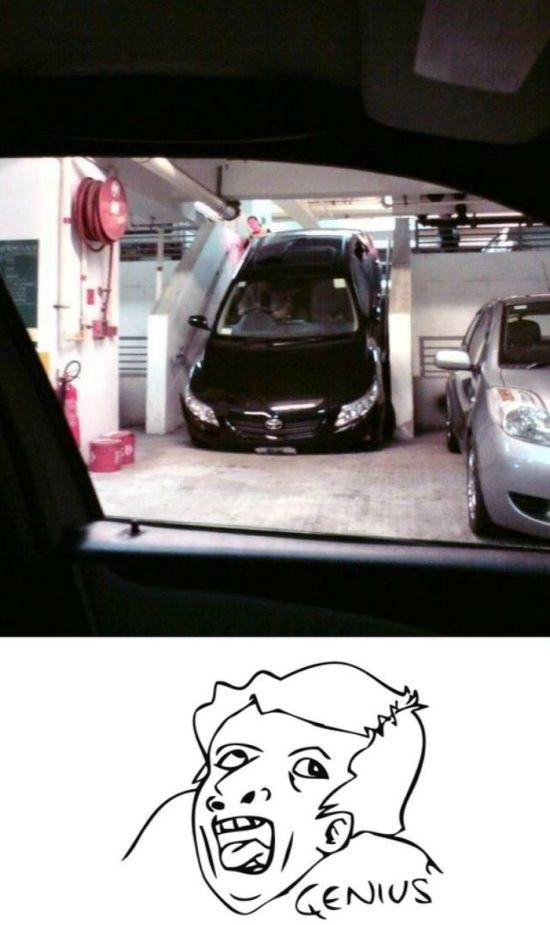 Funny Car-Themed Photos, part 2