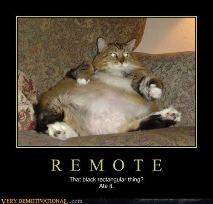 Funny Demotivational Posters, part 168