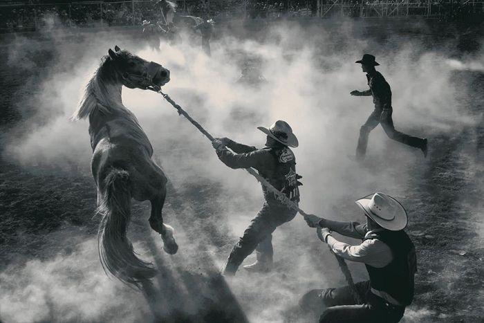 Smithsonian Magazine's Photo Contest Finalists