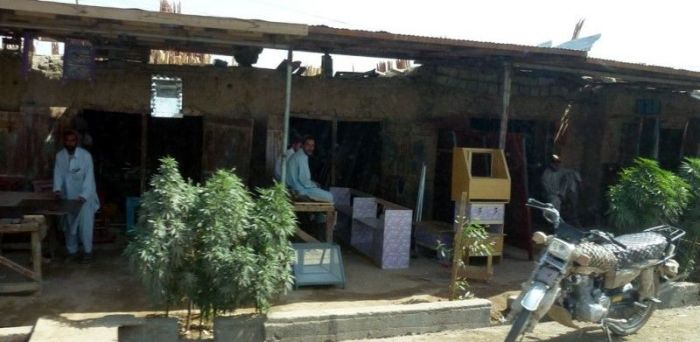 Cannabis in the Streets of Afghanistan