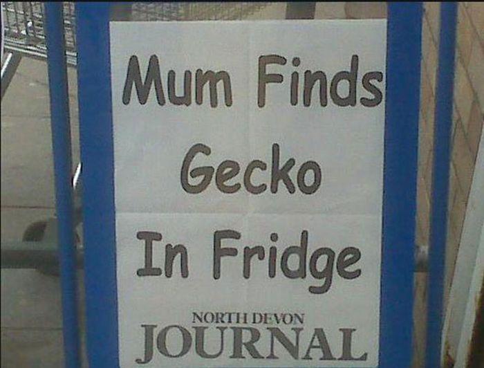 Very Important Local News Headlines
