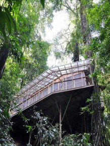 Treehouse Community