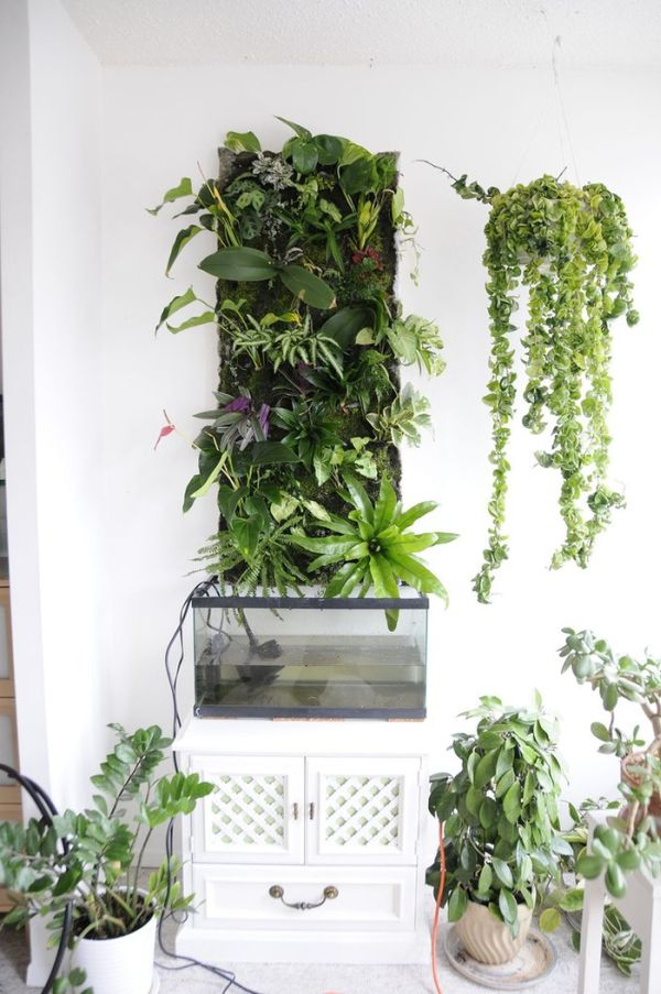 DIY Green Wall