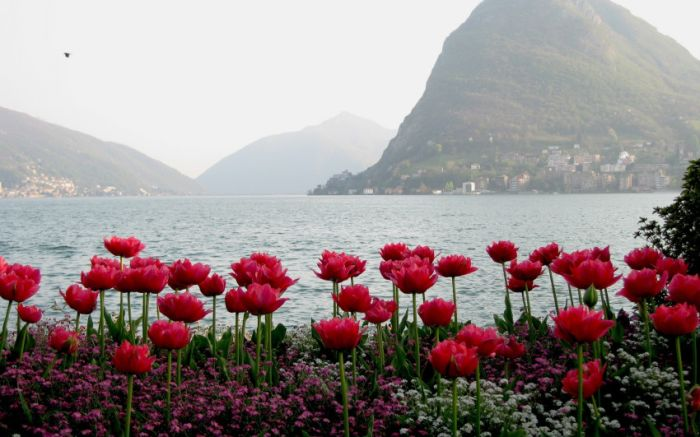 Amazing Landscapes, part 2