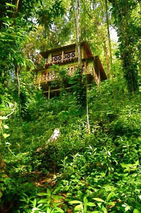 Kanopi House