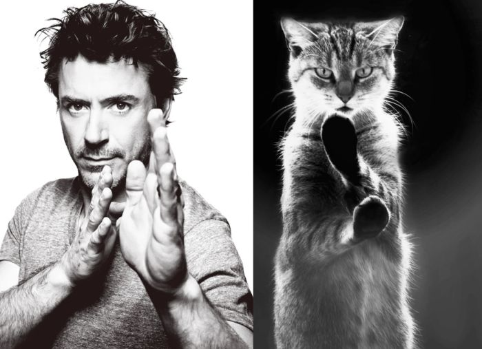 Hot Men And Their Feline Counterparts