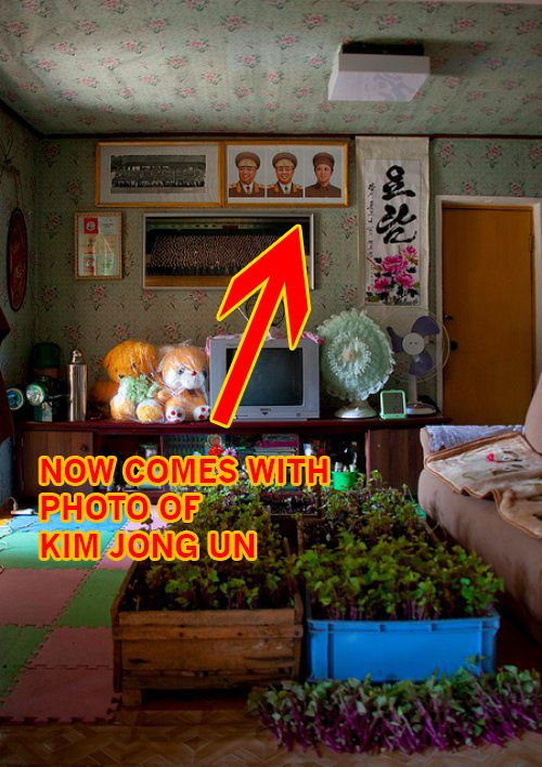 North Korean Homes