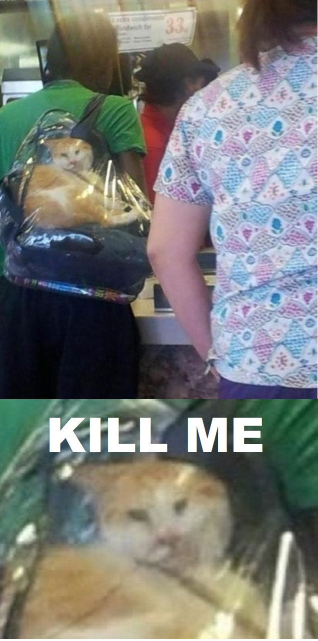 Kill Me Now