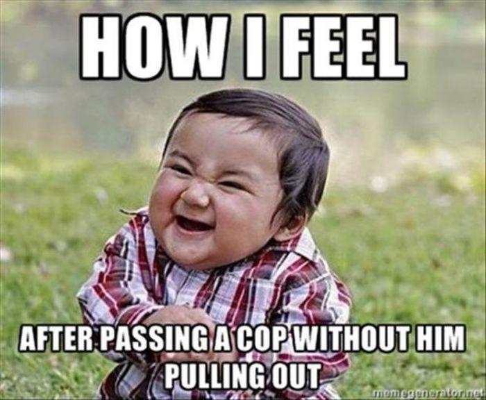 Funny Blank Meme : The funniest frustrated gordon ramsay memes