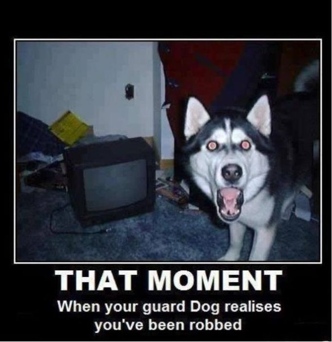 Funny Demotivational Posters, part 177