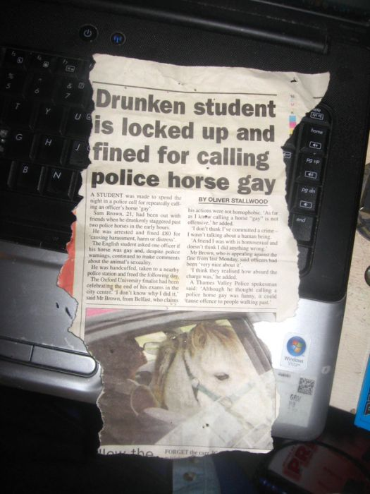 WTF Newspaper Headlines