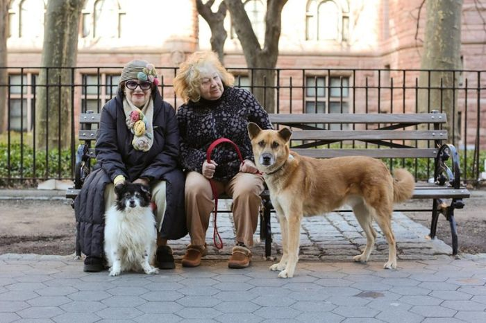 Old People of New York