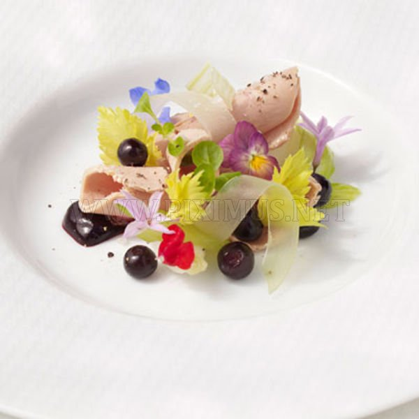The Most Beautiful Dishes