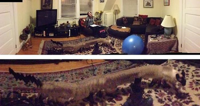 Panoramic Photo Fails