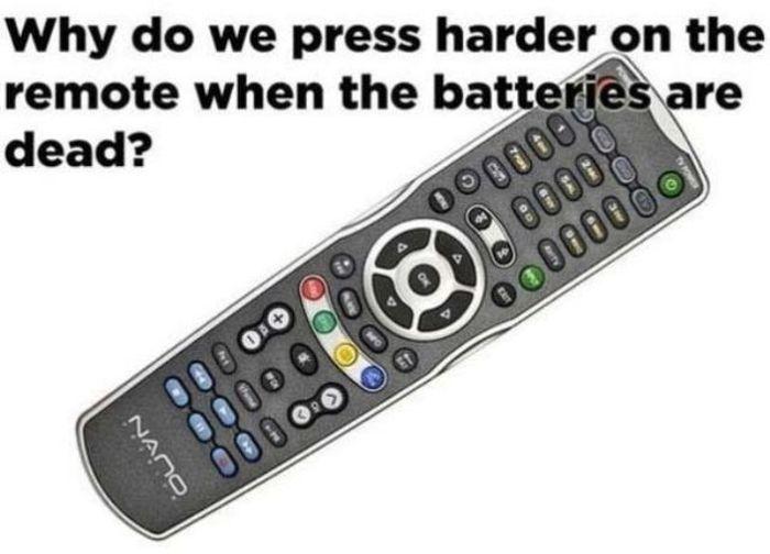 Does It Make Sense?
