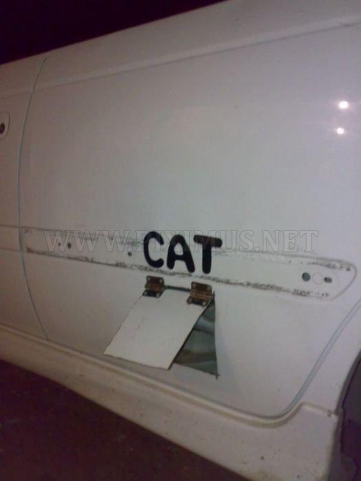 Door for Cat