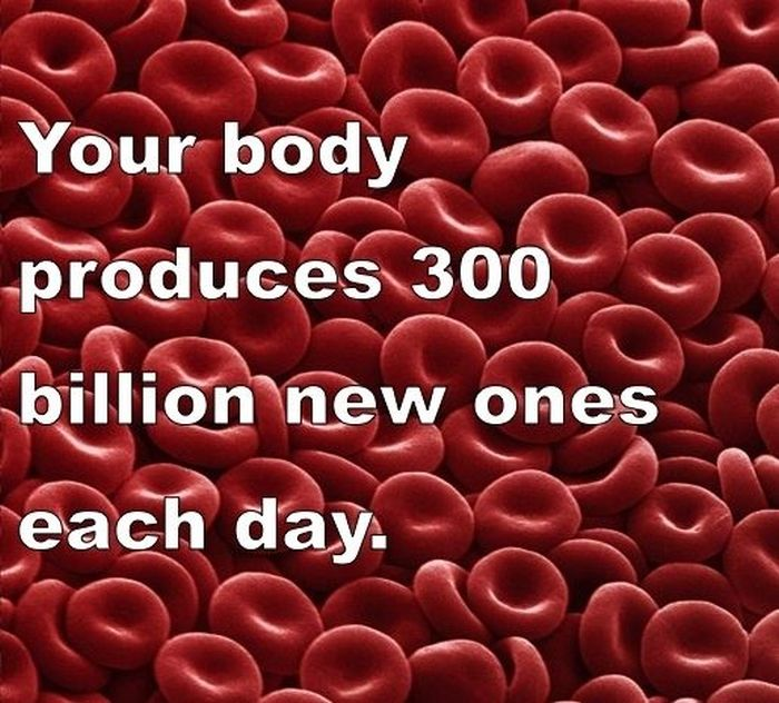 Interesting Facts about You and Your Body