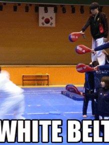 Amazing Martial Arts GIFs
