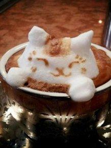 Amazing Latte Art