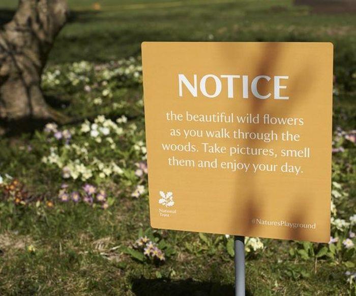 Positive Warning Signs