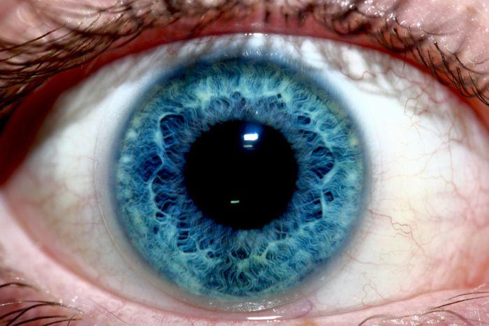 Mesmerizing Eyes Photography
