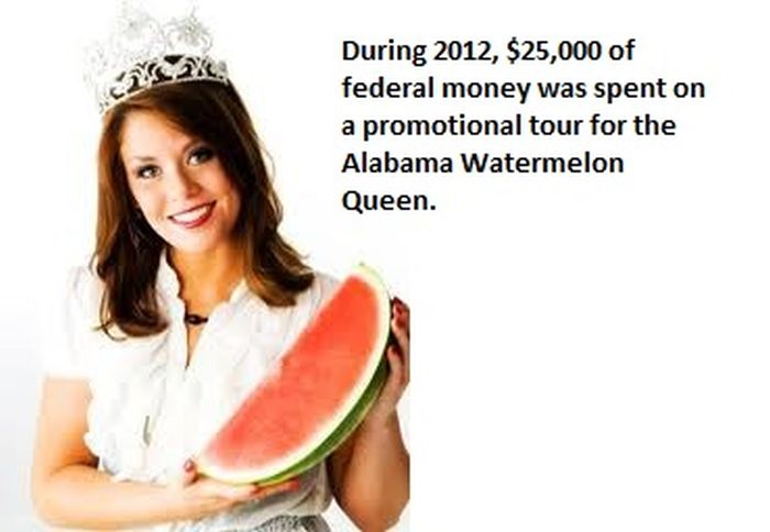 Wasted Money from American Public Funds
