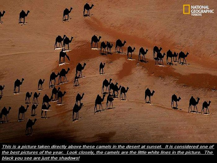 Beautiful Images and Interesting Facts