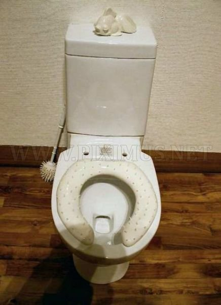 The Strangest Toilets Ever
