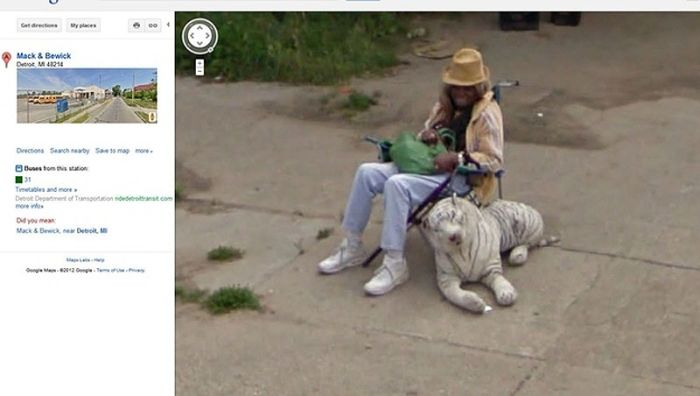 Unusual Images on Google Street View