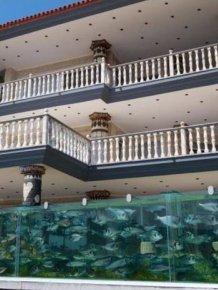 Aquarium Fence