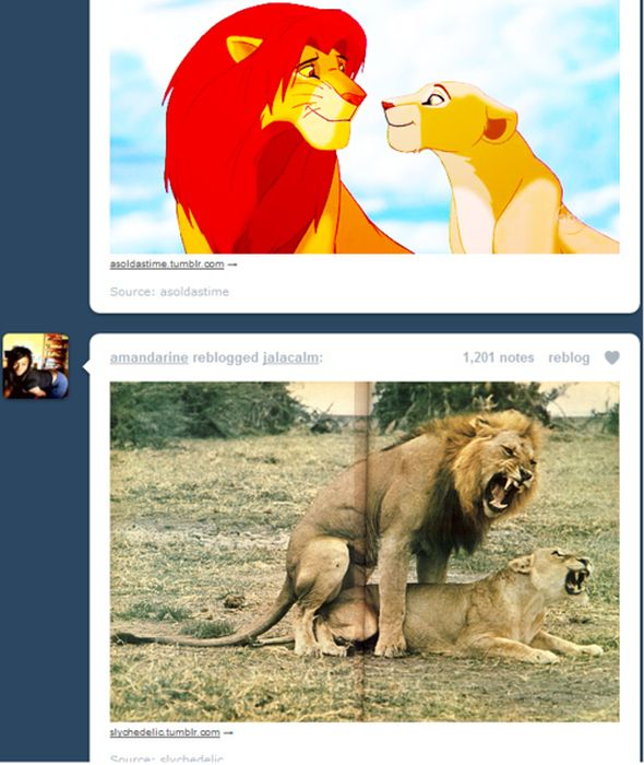 Funny Tumblr Coincidences, part 4