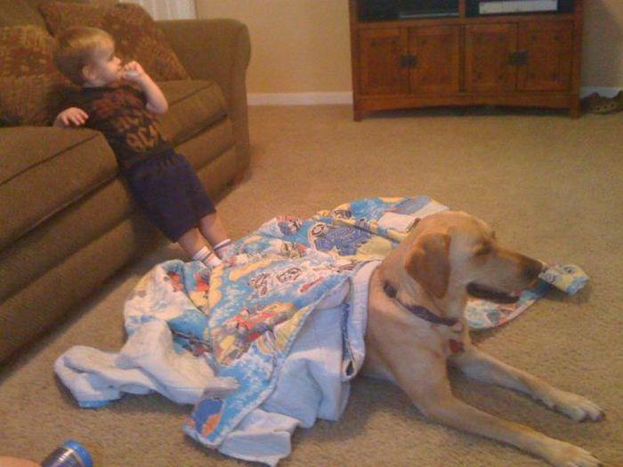 Kid and Dog Friendship