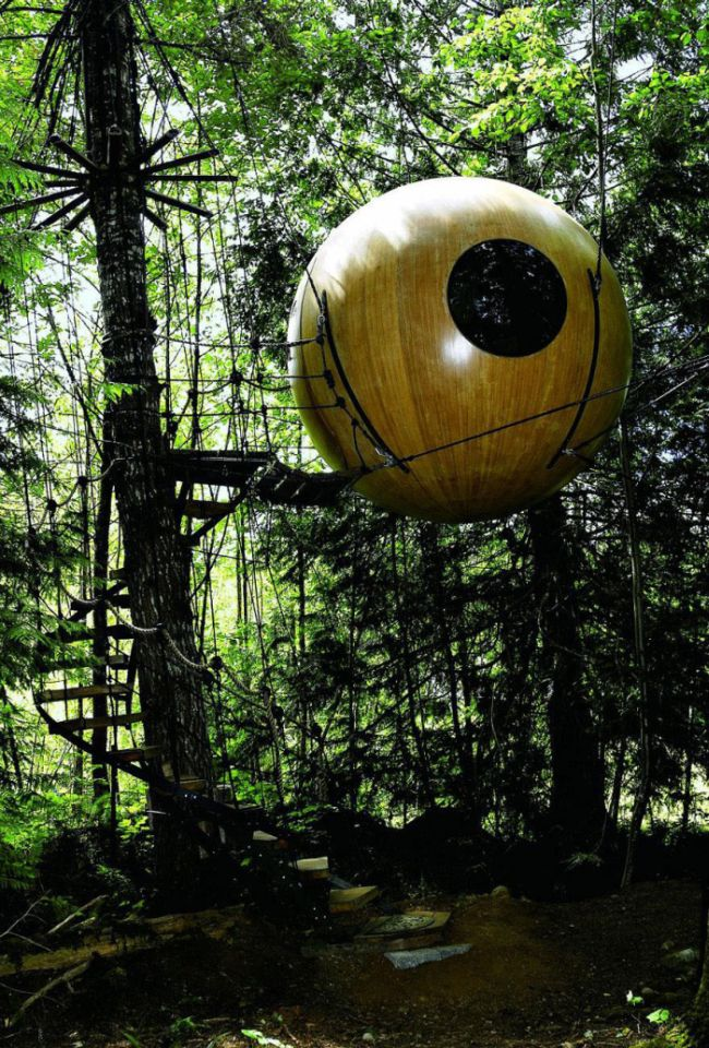 The Most Amazing Treehouses
