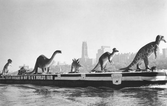 Rare Historical Photos, part 2