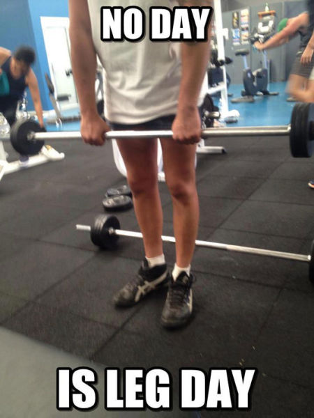 Leg Day Is Important