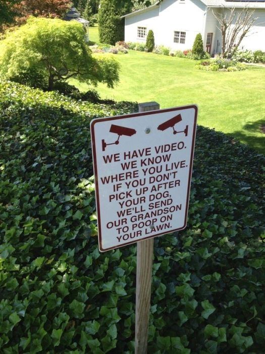 Funny and Strange Signs