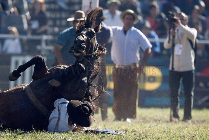 Gaucho, the Argentinian Cowboys
