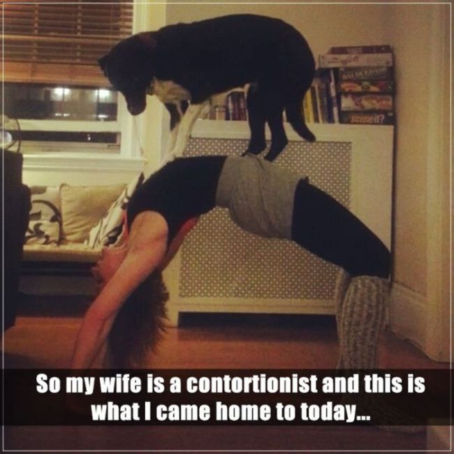 Funny Pictures about Wives