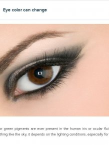 Interesting Facts About Your Eyes