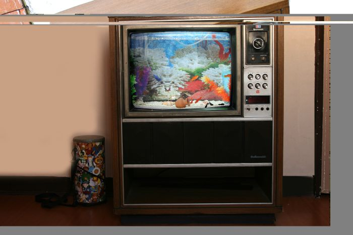Fish Tank Made Out of an Old TV