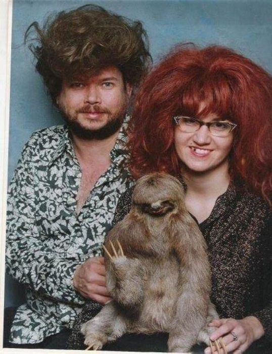 WTF Pictures, part 11