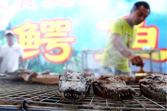 BBQ Crocodiles