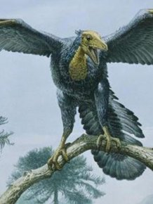 Strange Creatures That Existed in Prehistoric Times