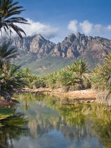 The amazing island of Socotra