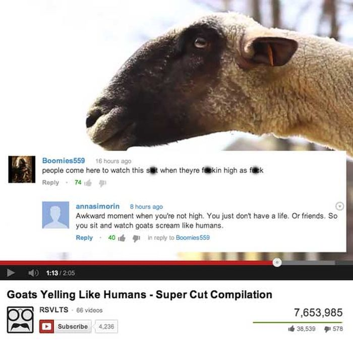 Funny Youtube Comments, part 3