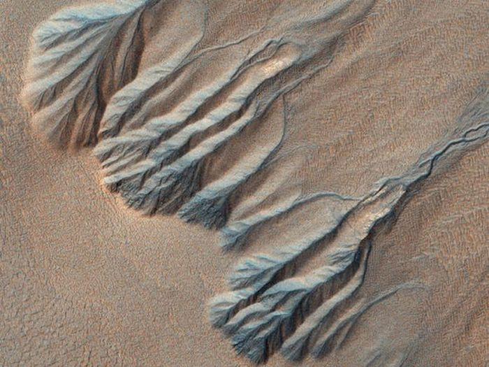 Pictures of Mars Taken by Orbiter