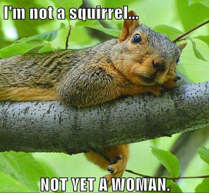 Replace it with Squirrel