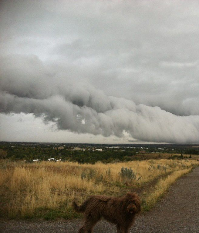 Shelf Clouds in Bozeman, MT