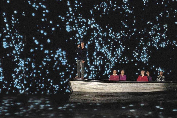 Starry Night Sky Created by Glowworms